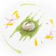 Uova-di-quaglia-in-camicia